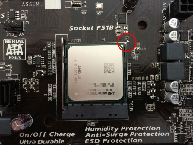 athlon5350-on-socket